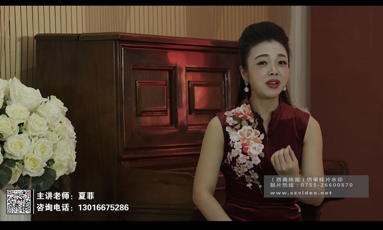 龙文艺术培训系列微课视频
